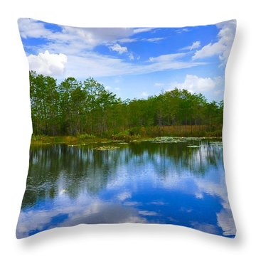 Sky Reflections Throw Pillow