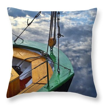 Sky Sailing Throw Pillow by Robert Lacy