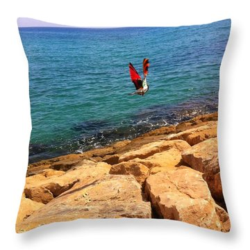 Sky Sea Land Flight Throw Pillow