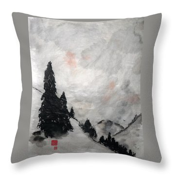 Sky Splendor Throw Pillow