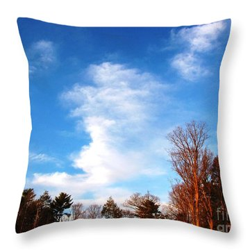 Sky Study 1 3/11/16 Throw Pillow by Melissa Stoudt