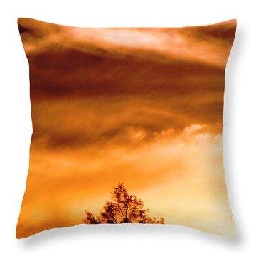Eye Of Jupiter Throw Pillow by Melissa Stoudt