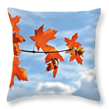 Sky View With Autumn Maple Leaves Throw Pillow