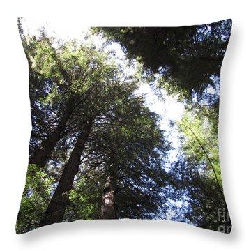 Skylight Wisdom Throw Pillow