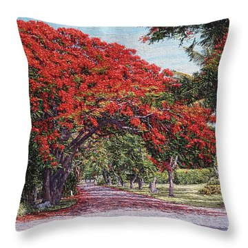 Skyline Drive Throw Pillow