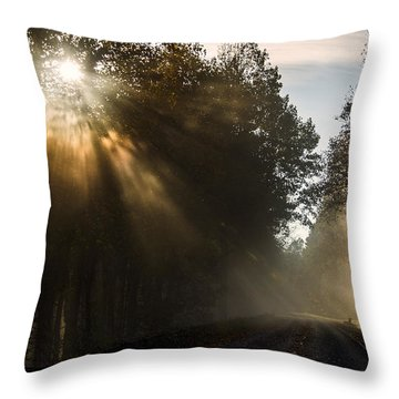 Throw Pillow featuring the photograph Skyline Drive Fall Color by Kevin Blackburn