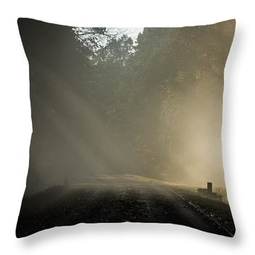 Throw Pillow featuring the photograph Skyline Drive One by Kevin Blackburn