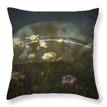 Skys Throw Pillow