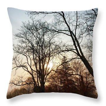 Skyscape Throw Pillow