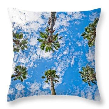 Daylight Throw Pillows