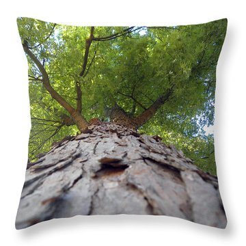 Skyward Throw Pillow by Teresa Schomig