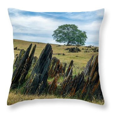 Slate Filled Meadow Throw Pillow