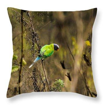 Slaty-headed Parakeet Throw Pillow by Ramabhadran Thirupattur