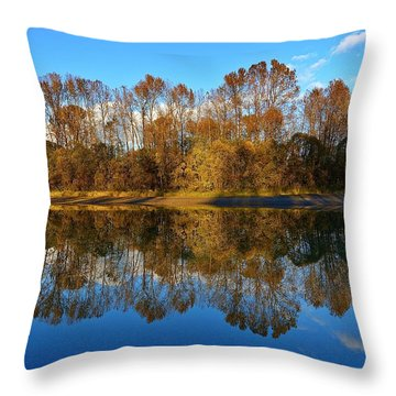 Fraser River Arm  Throw Pillow