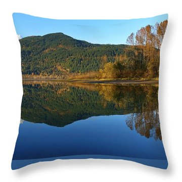 Sleek Serenity 3 Throw Pillow