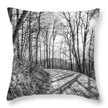 Sleep Hallow Road Throw Pillow