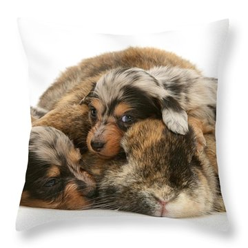 Sleep In Camouflage Throw Pillow