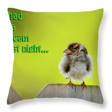 Sleeping Baby Sparrow Throw Pillow by Betty LaRue