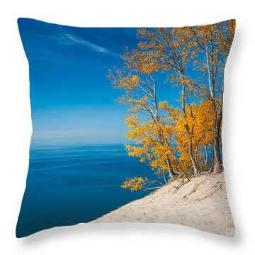 Sleeping Bear Dunes Vista 002 Throw Pillow