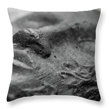 Throw Pillow featuring the photograph Sleeping by Clare Bambers