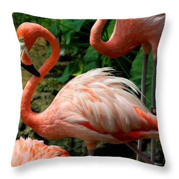 Sleeping Flamingo Throw Pillow