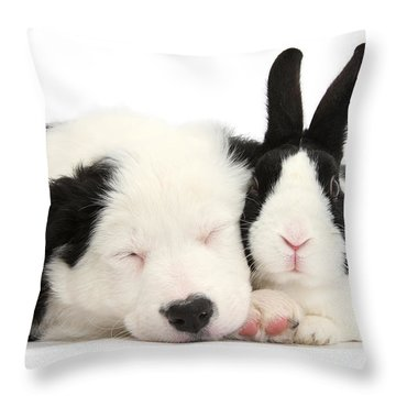 Sleeping In Black And White Throw Pillow