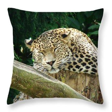 Sleeping Leopard Throw Pillow by Nicola Butt