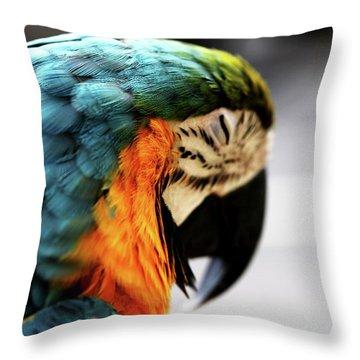 Sleeping Macaw Throw Pillow by Dan Pearce