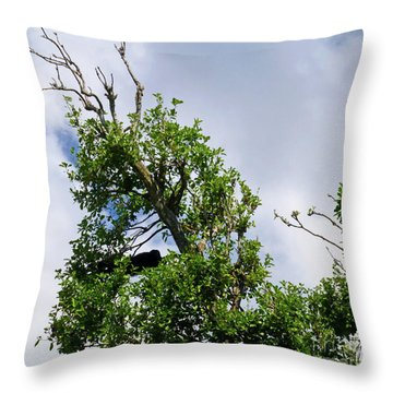Throw Pillow featuring the photograph Sleeping Monkey 2 by Francesca Mackenney