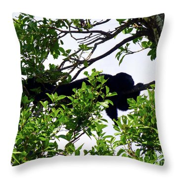 Throw Pillow featuring the photograph Sleeping Monkey by Francesca Mackenney