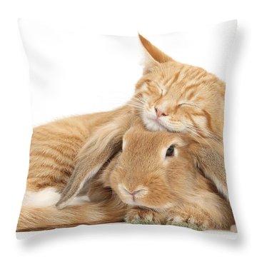 Sleeping On Bun Throw Pillow