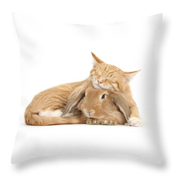 Sleeping On Bun Throw Pillow