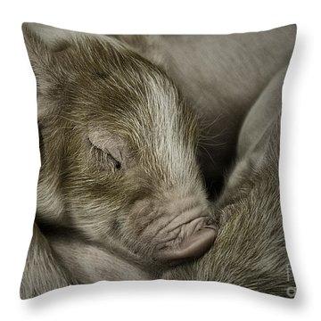 Sleeping Piglet Throw Pillow