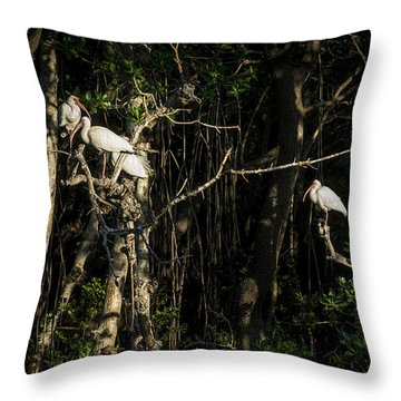 Sleeping Quarters Throw Pillow