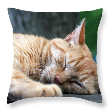 Sleeping Salem Throw Pillow