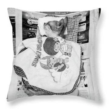 Sleeping Street Kitten Throw Pillow