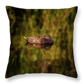 Sleepy Duck, Yanchep National Park Throw Pillow by Dave Catley