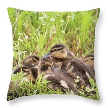 Sleepy Ducklings Throw Pillow