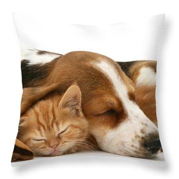 Sleepy Ginger Pals Throw Pillow