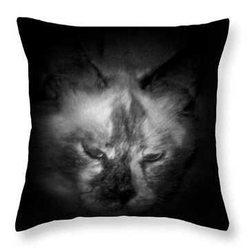 Throw Pillow featuring the photograph Sleepy Head by Betty Northcutt