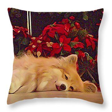 Throw Pillow featuring the photograph Sleepy Holiday Corgi Surrounded By Poinsettias. by Kathy Kelly