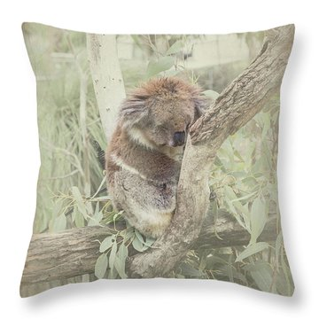 Sleepy Koala Throw Pillow