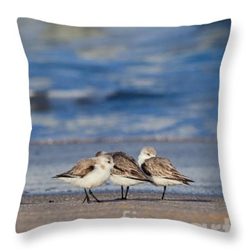 Throw Pillow featuring the photograph Sleepy Shorebirds by Michelle Wiarda