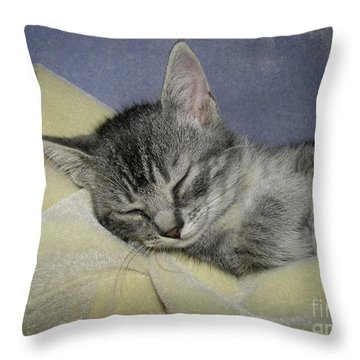 Sleepy Time Throw Pillow by Donna Brown