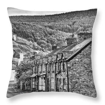 Sleepy Welsh Village Throw Pillow
