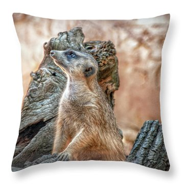 Throw Pillow featuring the photograph Slender-tailed Meerkat by Hanny Heim