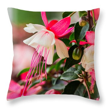 Slice Of Asian Garden Throw Pillow