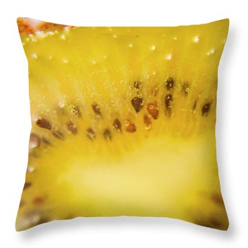 Sliced Kiwi Fruit Floating In Carbonated Beverage Throw Pillow