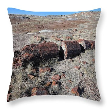 Sliced Not Diced Throw Pillow by Gary Kaylor