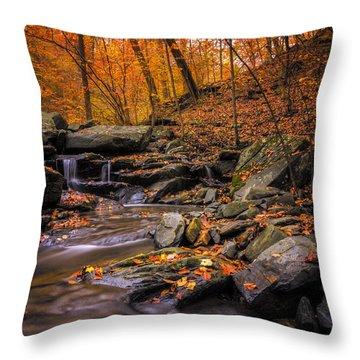 Sliding Autumn Throw Pillow by Edward Kreis